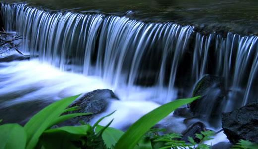 Divna priroda Nature